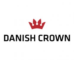 1 danish crown