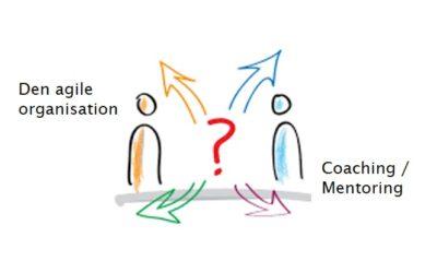 Agile organisationer og virksomhedskultur